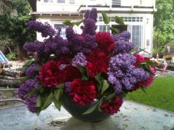 Flowers in vase outside